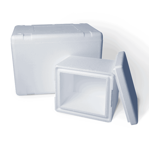 EPS Cooler - Cold Chain Packaging